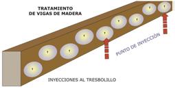 termitas-13