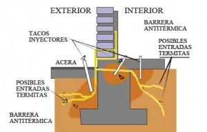 termitas-15